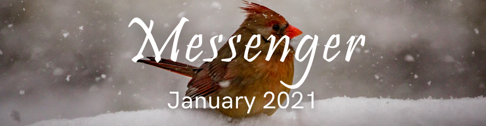 Messenger graphic for January 2021 with female cardinal image in snow
